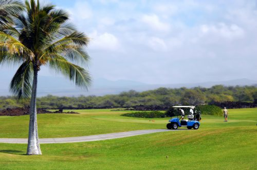 Group of retirees golf on the Big Island of Hawaii. Palm trees, volcanoes and volcanic rock form backdrop for this scenic golf course