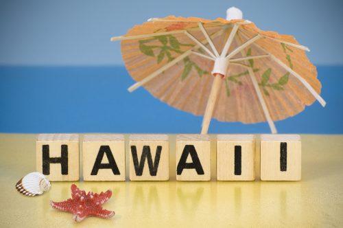 Holidays symbol - Hawaii