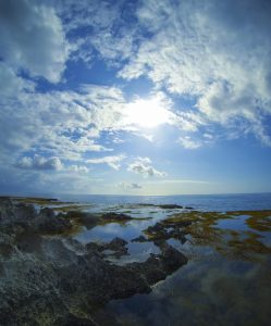 """""""Tide Pools near Shark's Cove, Oahu"""" by Thomas Shahan 3 is licensed under CC BY"""