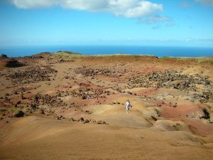 the-island-of-lanai-beauty-and-romance-5